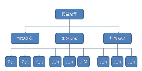 智络商家联盟的组织结构